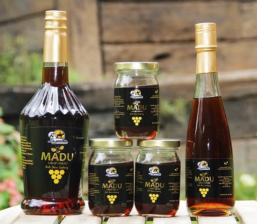 5 perkara tentang madu kelulut syamille (riview jujur)